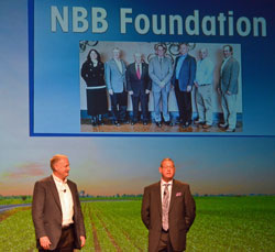 nbb-16-foundation